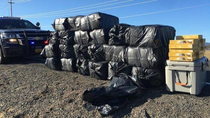 Die Polizei fand während einer Verkehrskontrolle mehr als 600 Pfund Marihuana auf der Ladefläche seines Pickups.
