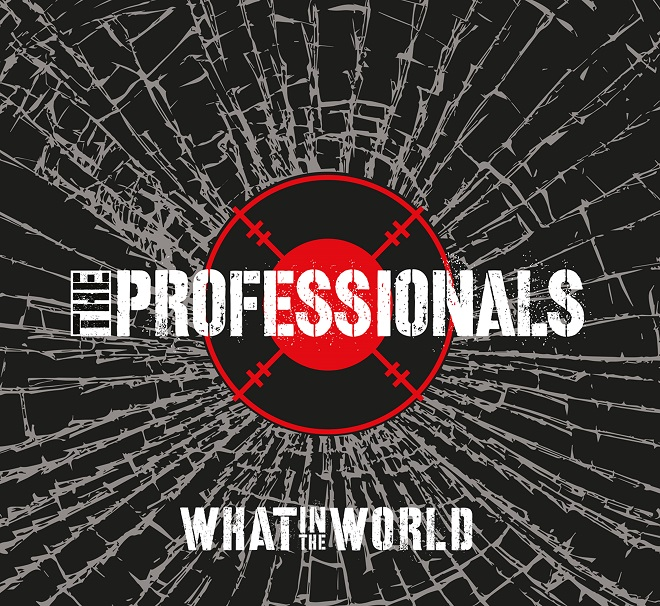 The Professionals - What In The World - Paul Cook