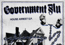 Government Flu - House Arrest