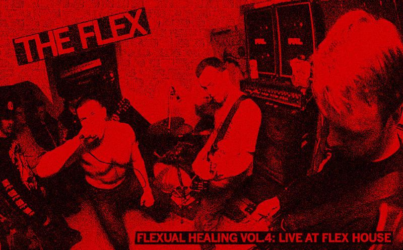 The Flex - Hardcore Uk82 Live