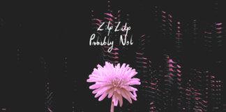 ZipZalp & Probably Not – Split-LP (2020)