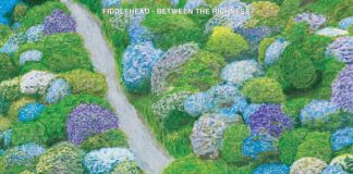 Fiddlehead - Between The Richness (2021)