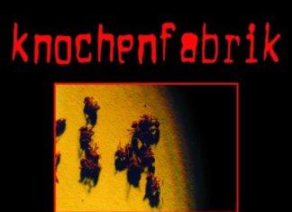Knochenfabrik -Ameisenstaat