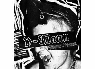 Steve Braun - V-Mann (Buch-Cover)